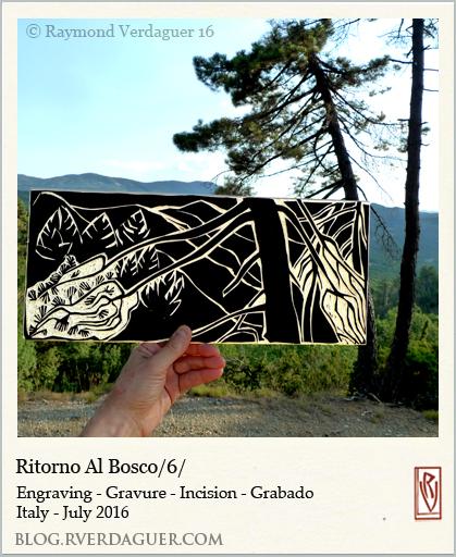 rvwit16casal-Rbosco6